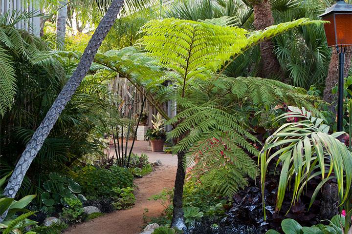 Sherman-Gardens-path